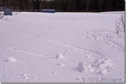 6 March snow rollers